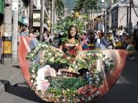 Fiestas del carriel 2018_10